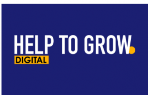 Help to Grow Digital